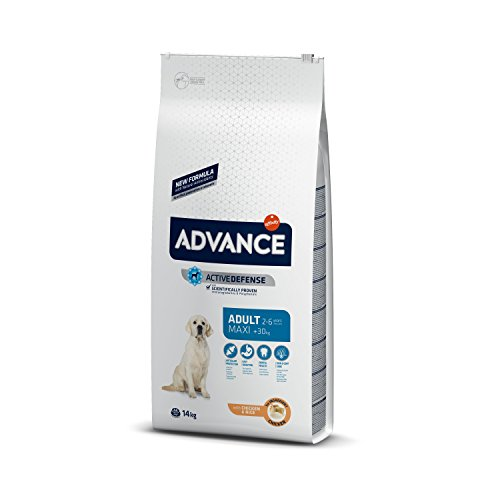 Advance Perro Maxi Adult Light Pollo y arroz, 14 kg