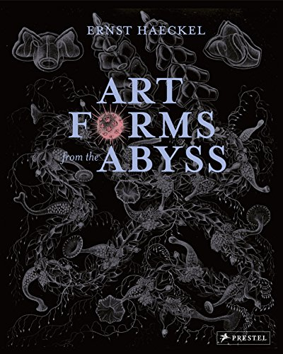 Art Forms From The Abyss. Ernst Haeckel's Images F: Ernst Haeckel's Images from the HMS Challenger Expedition