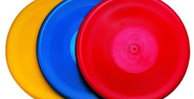 Decathlon Frisbee
